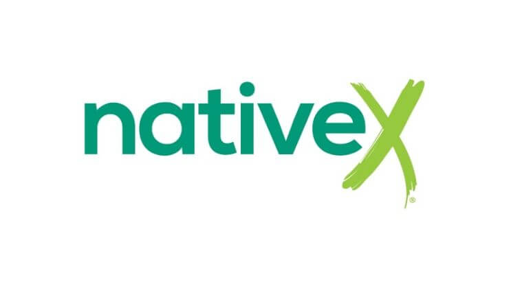 NativeX How do apps make money